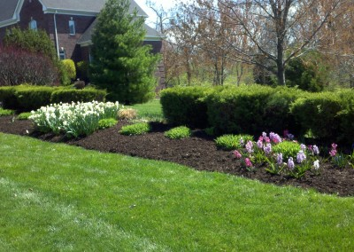 Landscaping Sample 21