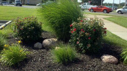 Landscaping Sample 29