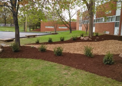 Landscaping Sample 5