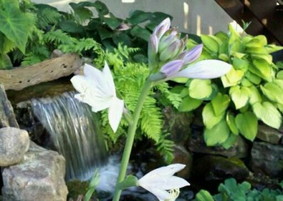 Water Feature Sample 10